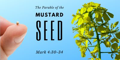 The Parable of the Mustard Seed (Mark 4:30-34)