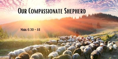 Our Compassionate Shepherd (Mark 6:30-44)