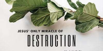 Jesus' Only Miracle of Destruction (Mark 11:12-21)